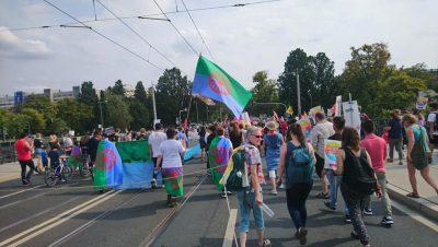 Bild von Menschenmenge auf Kulturfestival der Roma und Sinti in Sachsen © Romano Sumnal e.V.